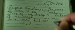 A snapshot of Amy Dunne's fake journal. Image courtesy of Twentieth Century Fox.